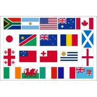 Drapeaux des 20 nations finalistes de la coupe du monde de rugby