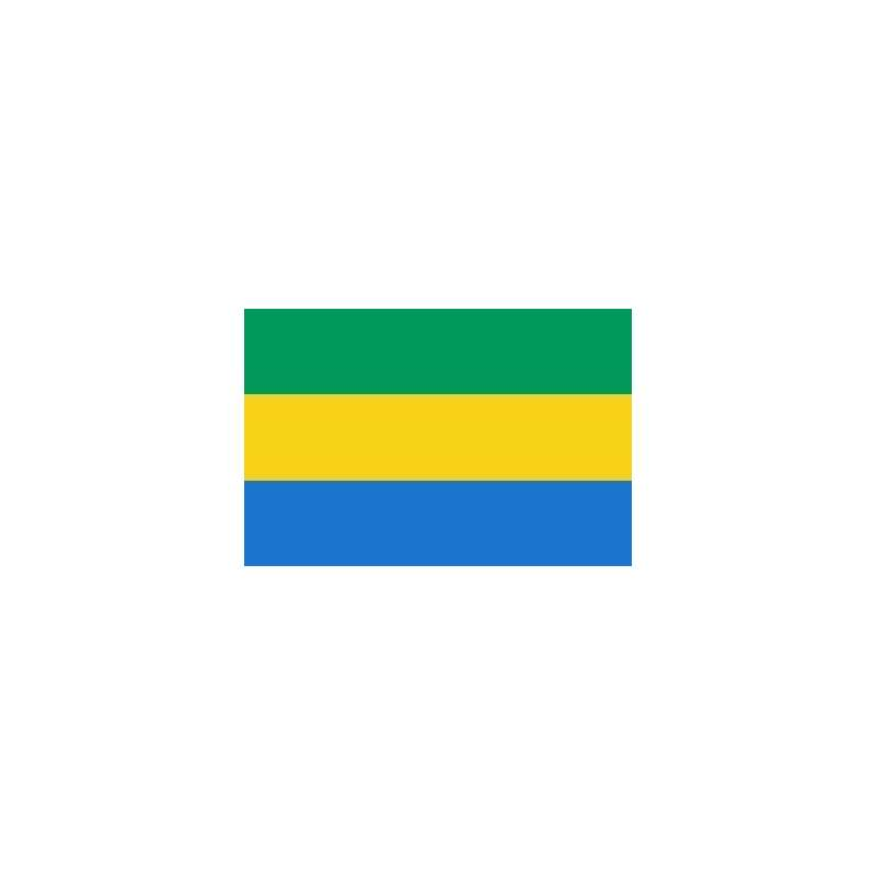 Image result for drapeau gabon