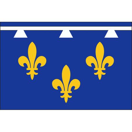 Drapeau de l'Orléanais
