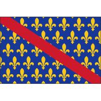 Drapeau du Bourdonnais