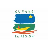 Drapeau / Pavillon Région Guyane (S3)