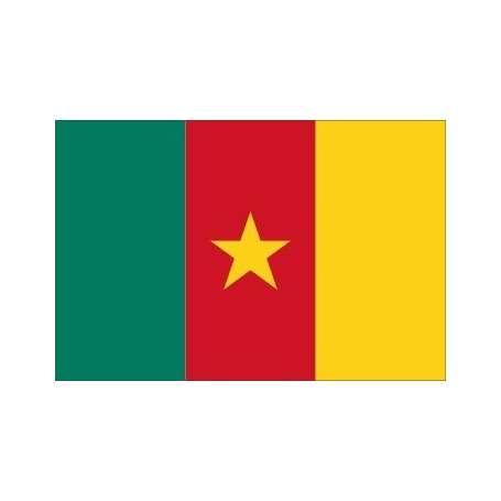 Drapeau / Pavillon Cameroun